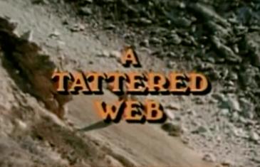 A Tattered Web